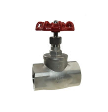 Globe valve made of stainless steel